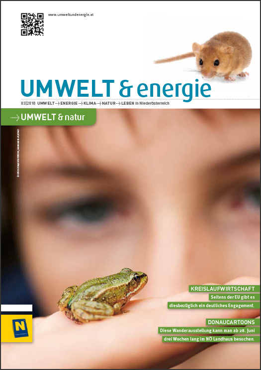 Cover UMWELT & energie 03/2018